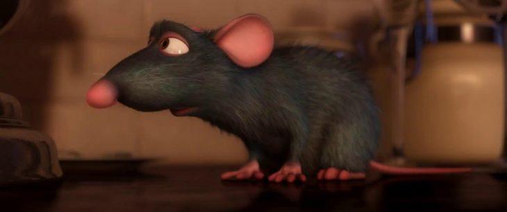 затаилась кустах крыса рататуй фото пишите