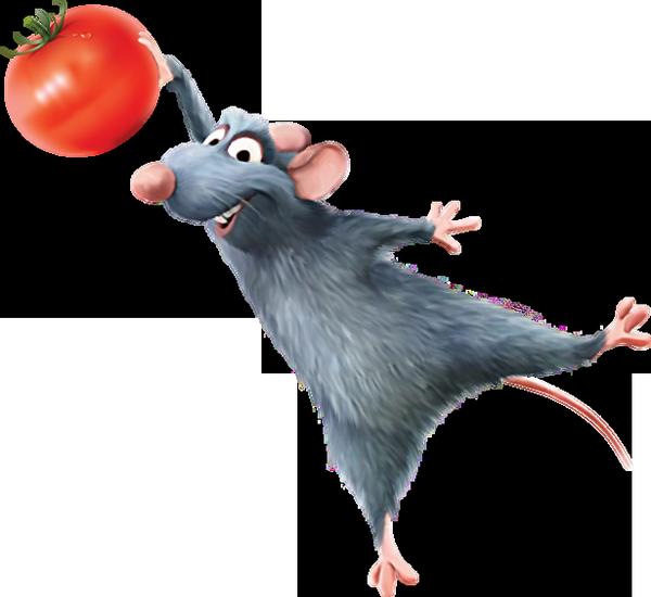 Для детей, рататуй картинки крыса