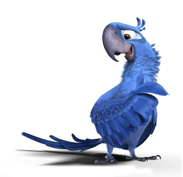 Картинка голубчика из рио