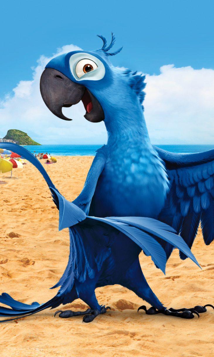 целом картинки попугая голубчика планы