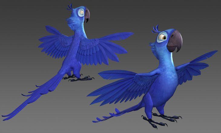 Картинки жемчужинки и голубчика из рио