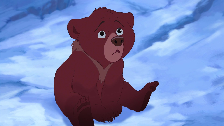 Картинки про медведя из мультика
