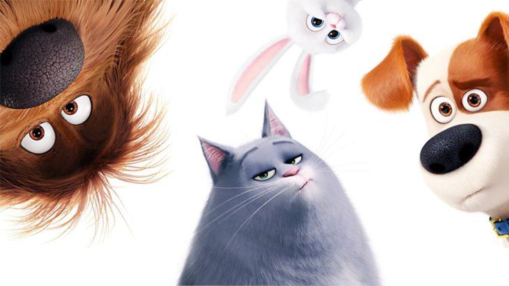 Домашние животные из мультиков в картинках