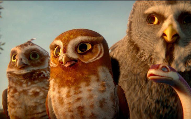 Картинки сова смотрит кино