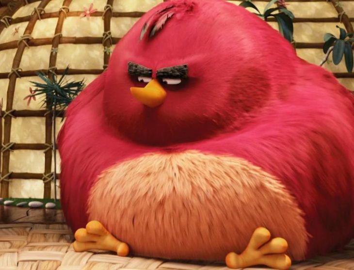 Картинка птички энгри бердз толстая